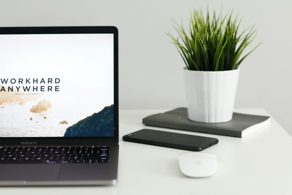 The Relationship Between Content Marketing and SEO plant on desk